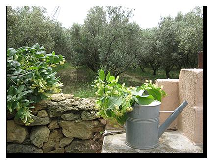 gites-jardin